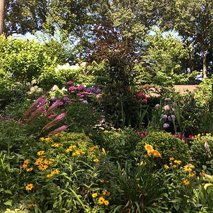 Garden, Stony Brook
