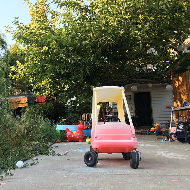 Petaluma backyard